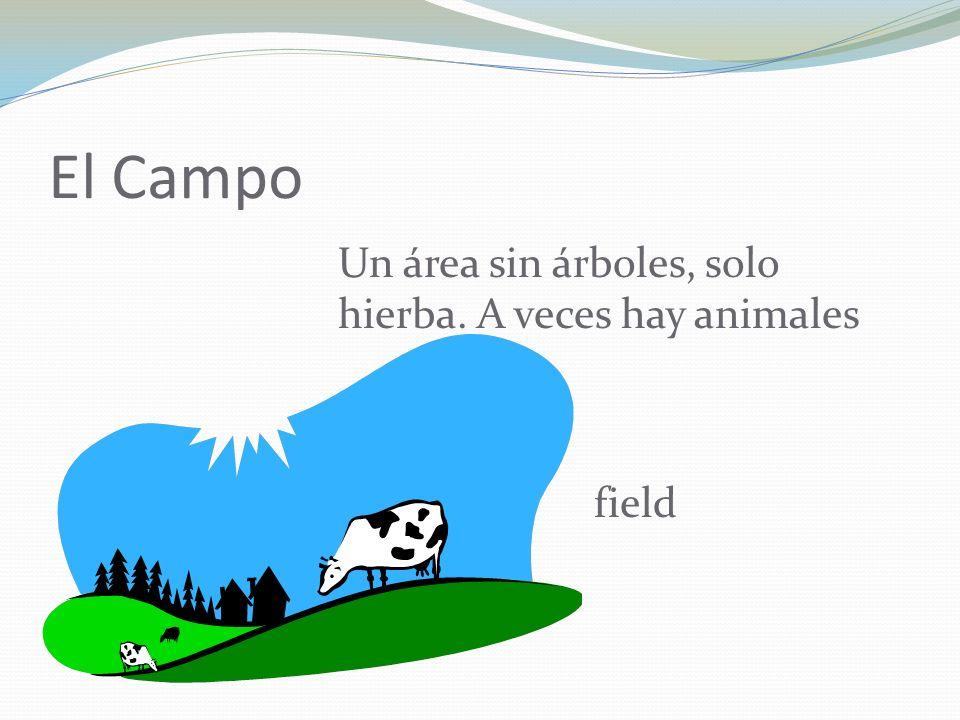 El Campo Un área sin árboles, solo hierba. A veces hay animales field