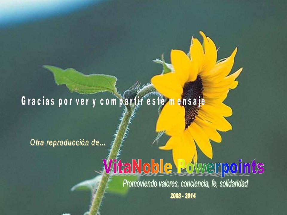 www.vitanoblepowerpoints.net Que esta melodía y su reflexión, sean un motivo de celebración en este día, con un amor inmenso para toda la vida.