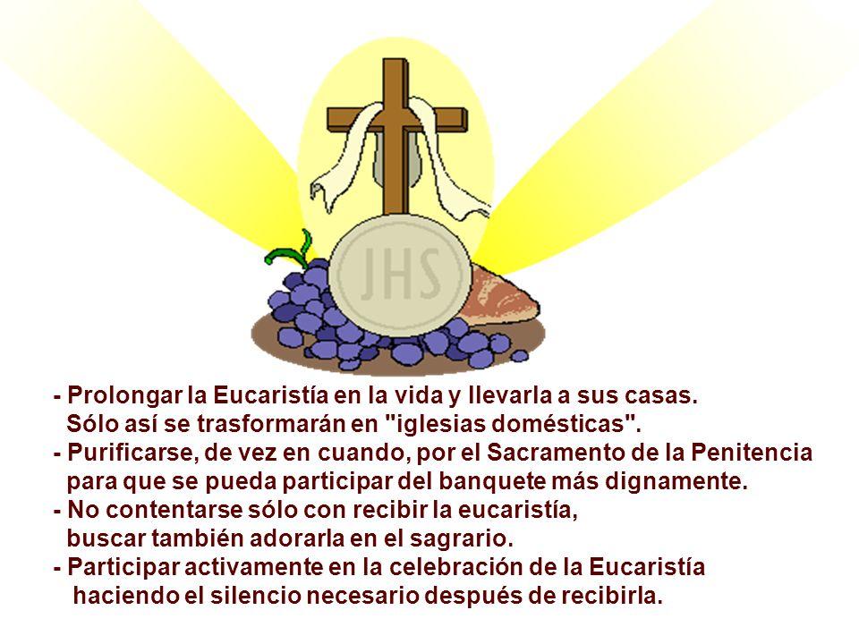 Podemos, en este día solemne, presentar algunas propuestas: - Tener la celebración de la Eucaristía, como la prioridad del domingo.
