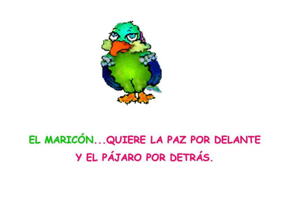 EL MARICÓN...QUIERE LA PAZ POR DELANTE Y EL PÁJARO POR DETRÁS.