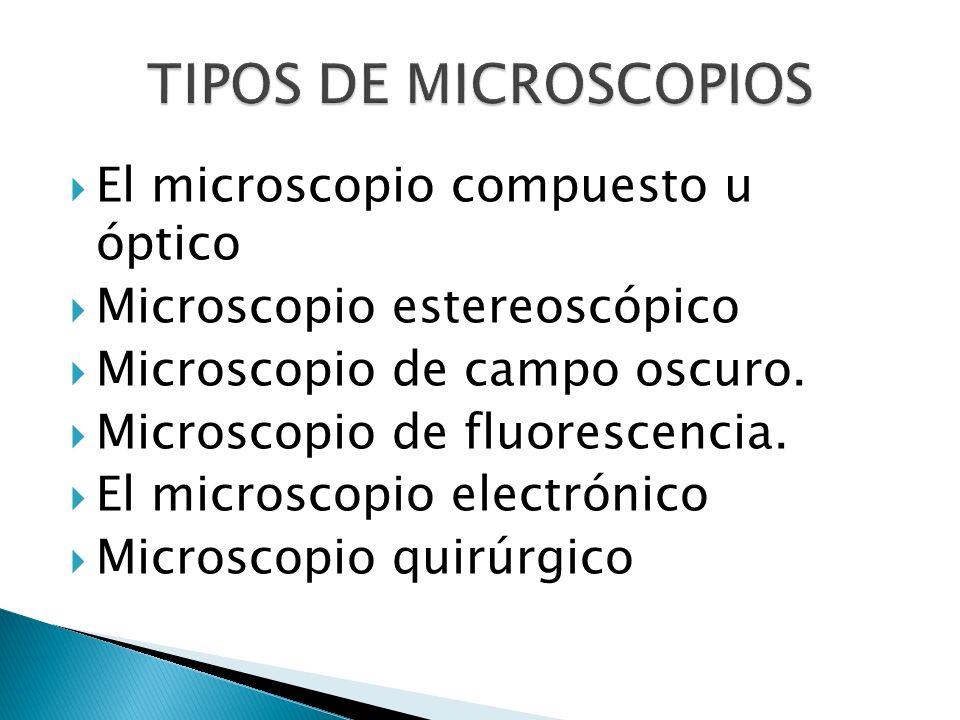 El microscopio compuesto u óptico Microscopio estereoscópico Microscopio de campo oscuro. Microscopio de fluorescencia. El microscopio electrónico Mic