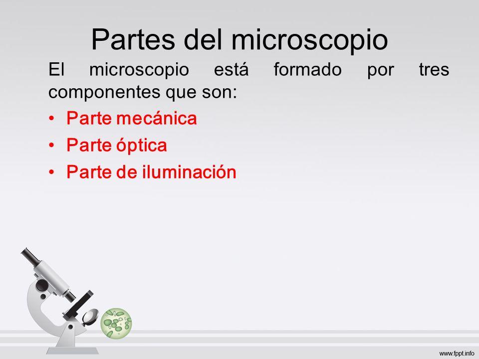 Partes del microscopio El microscopio está formado por tres componentes que son: Parte mecánica Parte óptica Parte de iluminación