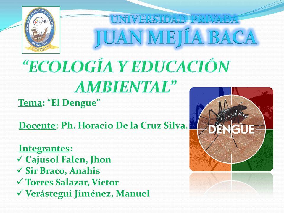 Tema: El Dengue Docente: Ph. Horacio De la Cruz Silva. Integrantes: Cajusol Falen, Jhon Sir Braco, Anahis Torres Salazar, Víctor Verástegui Jiménez, M
