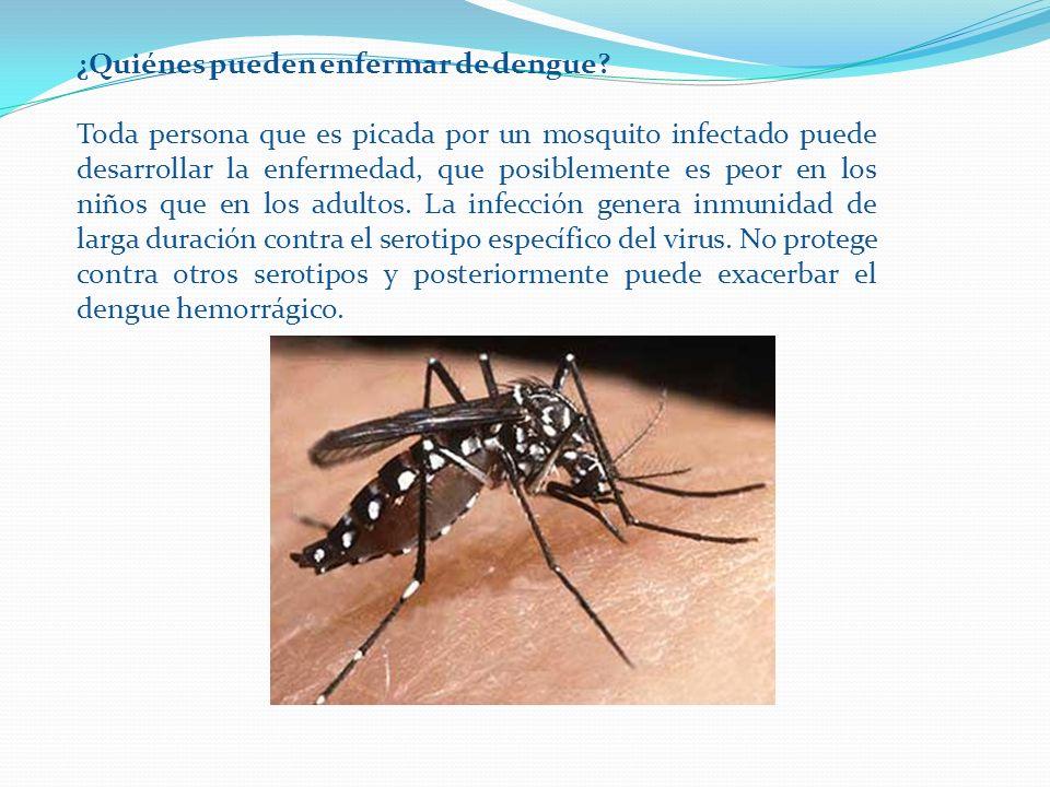 ¿Quiénes pueden enfermar de dengue? Toda persona que es picada por un mosquito infectado puede desarrollar la enfermedad, que posiblemente es peor en