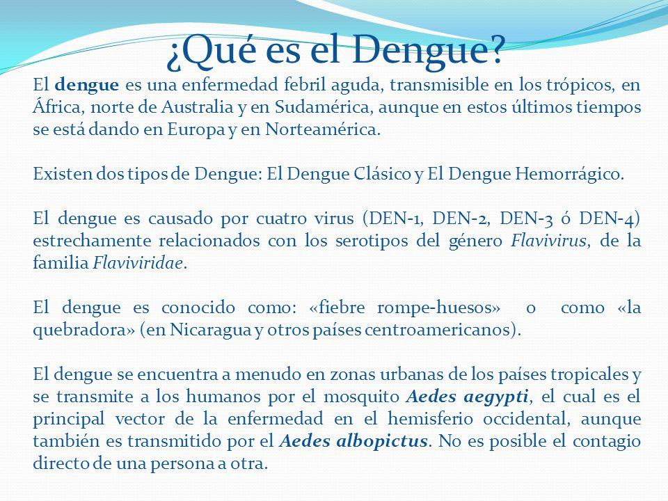 ¿Qué es el Dengue? El dengue es una enfermedad febril aguda, transmisible en los trópicos, en África, norte de Australia y en Sudamérica, aunque en es