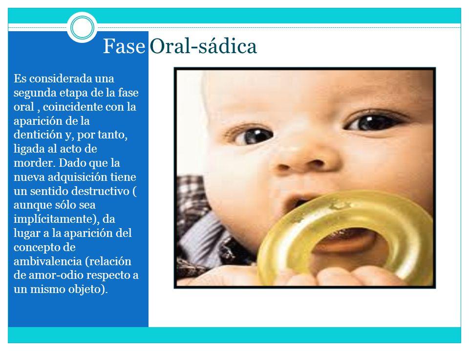 Fase Oral-sádica Es considerada una segunda etapa de la fase oral, coincidente con la aparición de la dentición y, por tanto, ligada al acto de morder