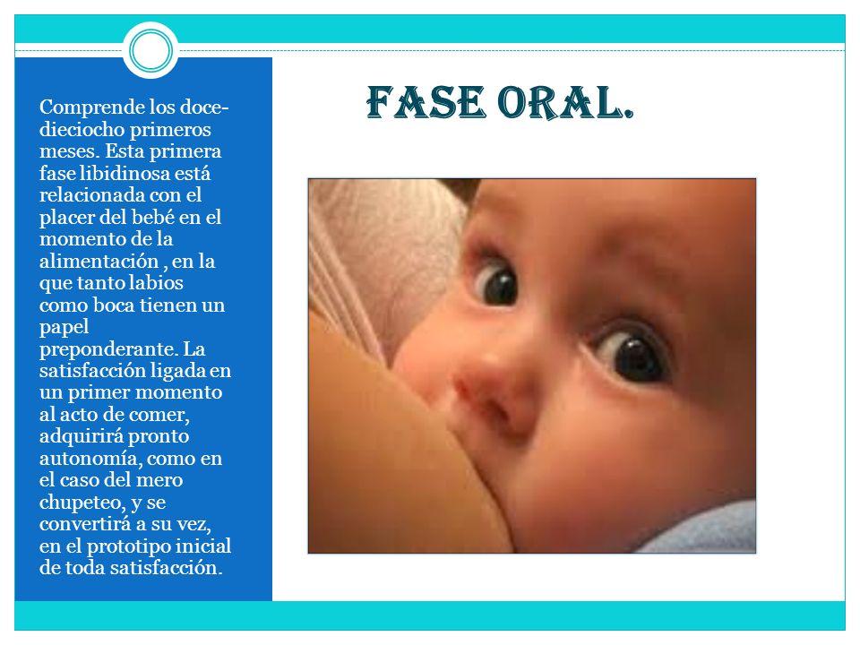 Fase oral. Comprende los doce- dieciocho primeros meses. Esta primera fase libidinosa está relacionada con el placer del bebé en el momento de la alim
