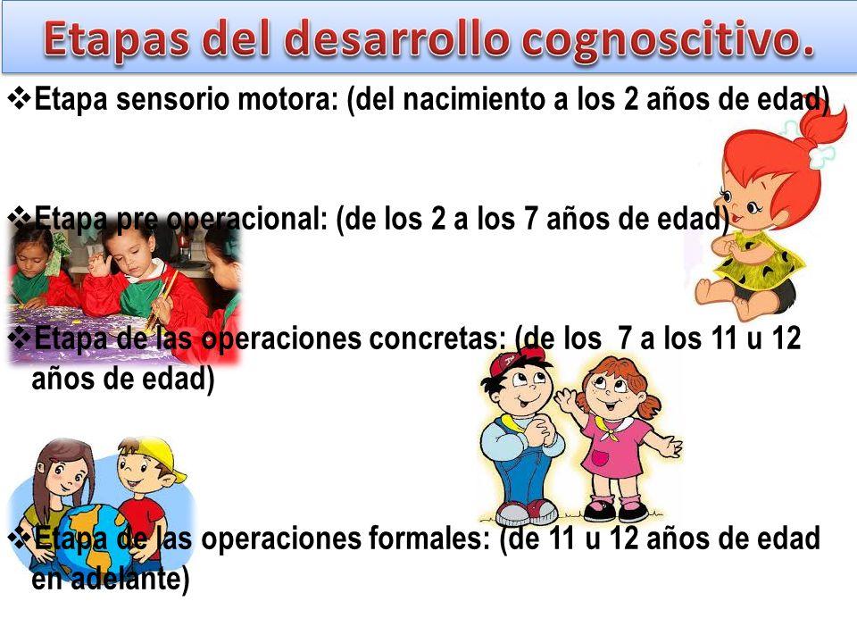 Etapa sensorio motora: (del nacimiento a los 2 años de edad) Etapa pre operacional: (de los 2 a los 7 años de edad) Etapa de las operaciones concretas: (de los 7 a los 11 u 12 años de edad) Etapa de las operaciones formales: (de 11 u 12 años de edad en adelante)