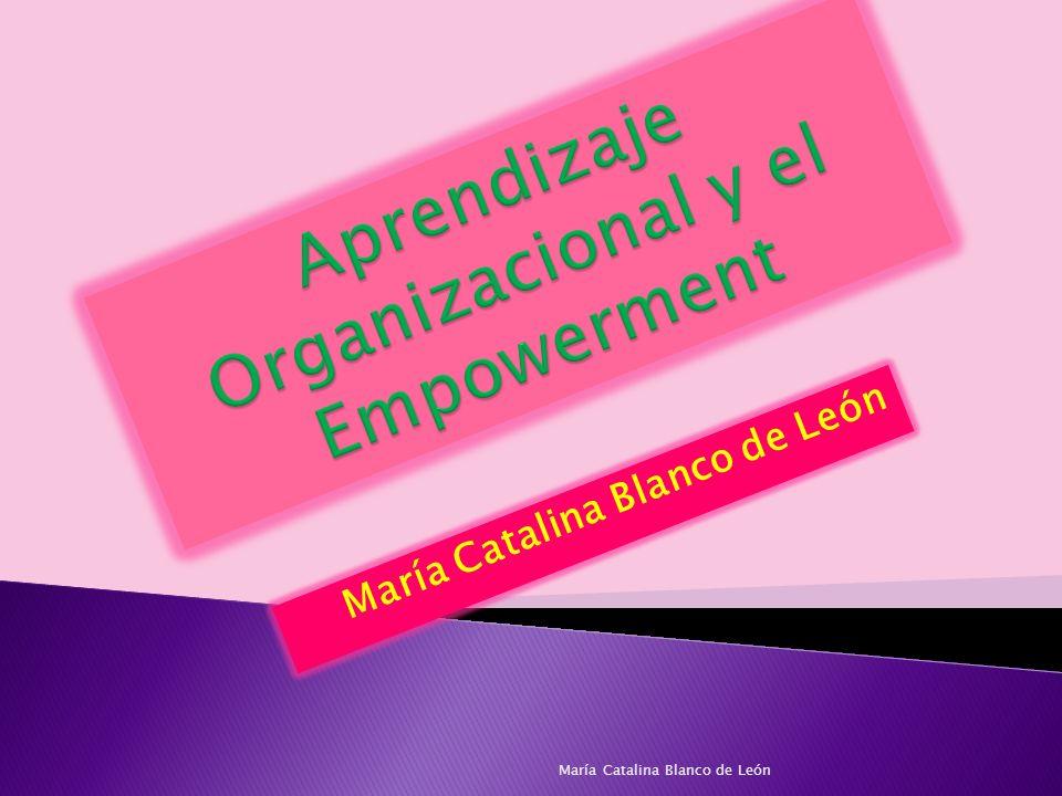 Se comparten el liderazgo y las tareas administrativas Los miembros tienen facultad para evaluar y mejorar la calidad del desempeño y el proceso de información.