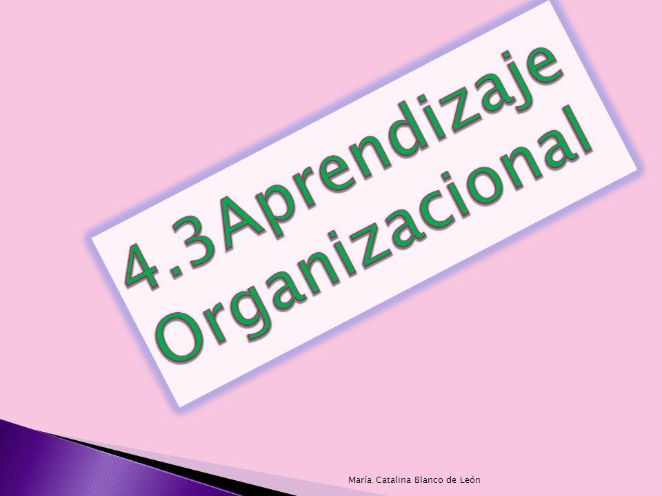 El aprendizaje organizacional es un proceso mediante el cual las entidades, adquieren y crean información, con la finalidad de transformarlo en un recurso de la empresa, que le permita a la organización adaptarse al cambio.