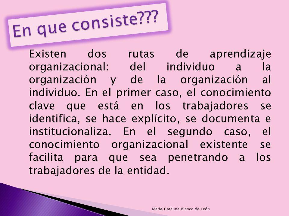 Existen dos rutas de aprendizaje organizacional: del individuo a la organización y de la organización al individuo. En el primer caso, el conocimiento