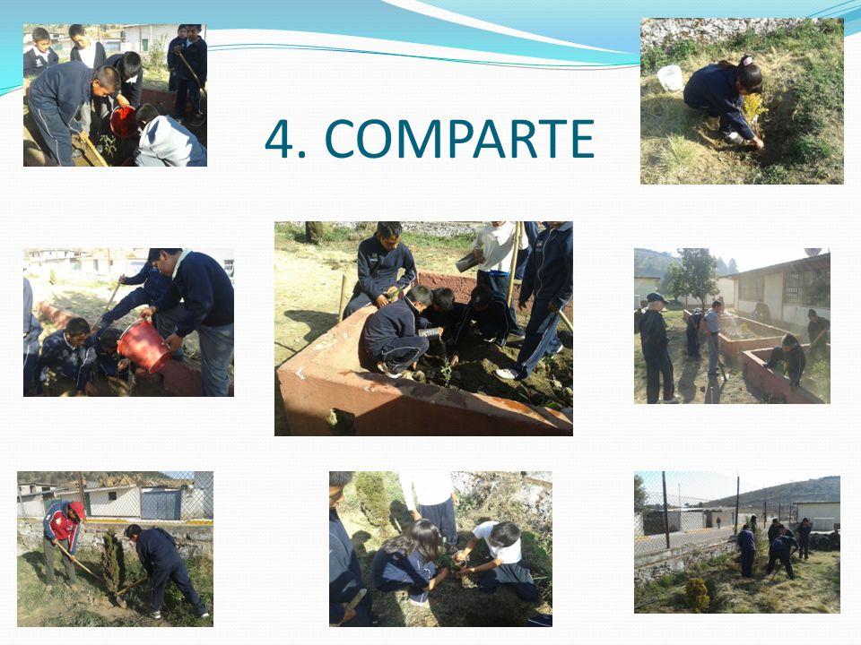 4. COMPARTE