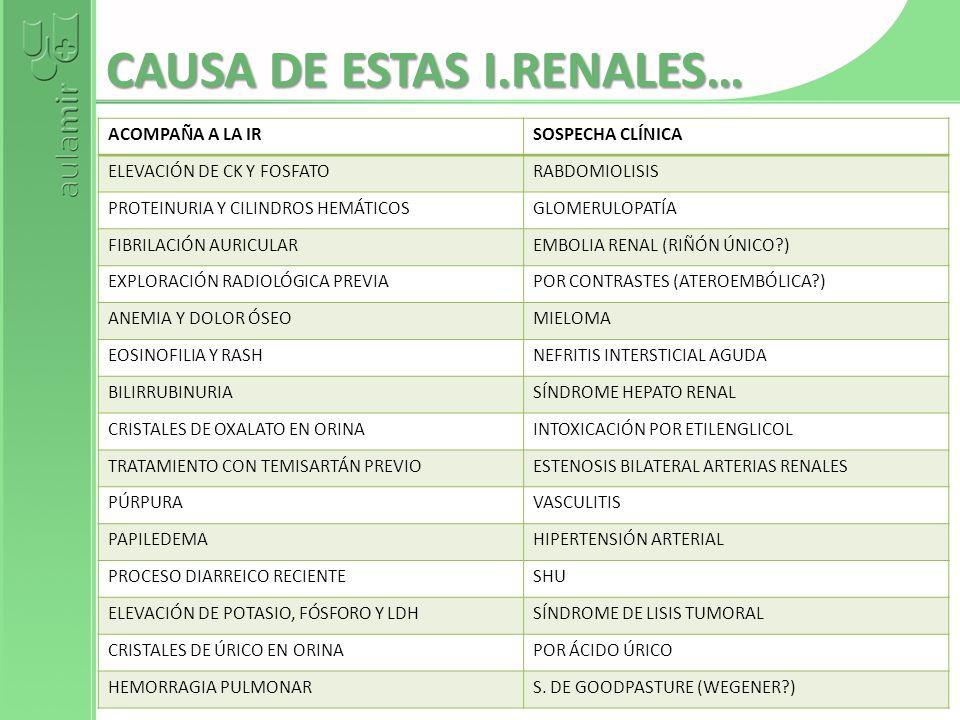 CAUSA DE ESTAS I.RENALES… ACOMPAÑA A LA IRSOSPECHA CLÍNICA ELEVACIÓN DE CK Y FOSFATORABDOMIOLISIS PROTEINURIA Y CILINDROS HEMÁTICOSGLOMERULOPATÍA FIBR