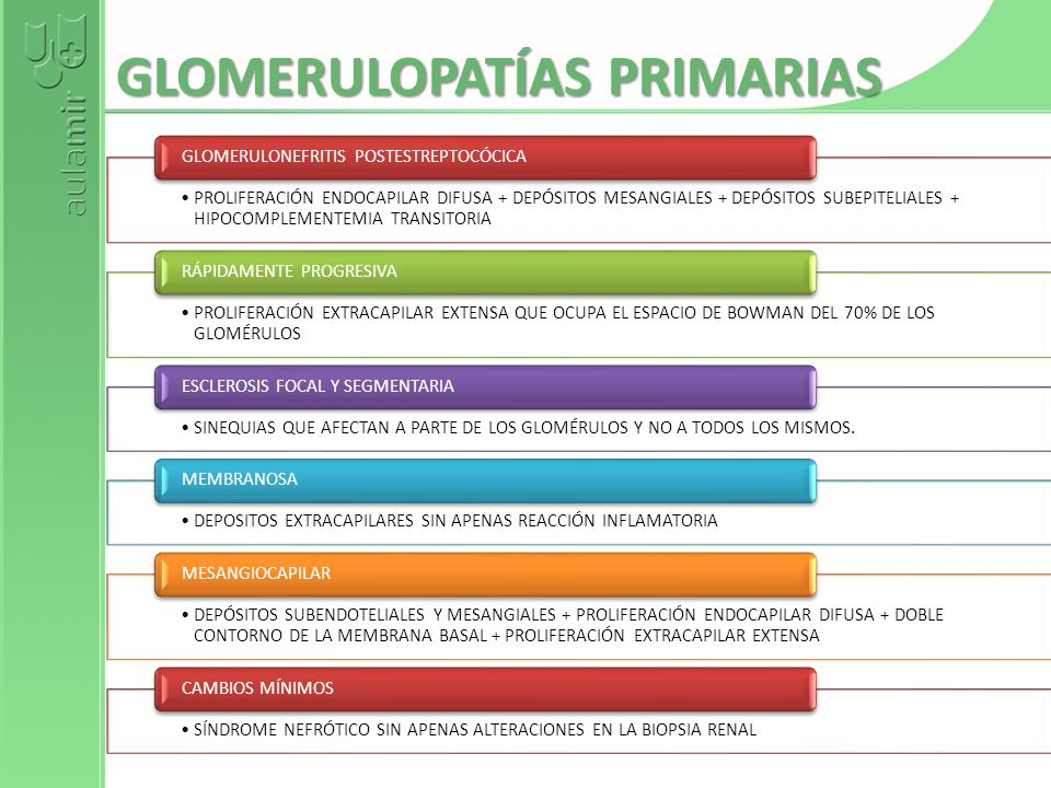 GLOMERULOPATÍAS PRIMARIAS PROLIFERACIÓN ENDOCAPILAR DIFUSA + DEPÓSITOS MESANGIALES + DEPÓSITOS SUBEPITELIALES + HIPOCOMPLEMENTEMIA TRANSITORIA GLOMERU