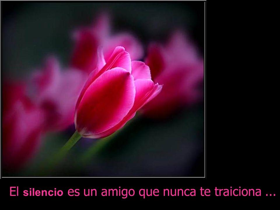 Un verdadero amigo es alguien que te da la mano y llega a tu corazón …