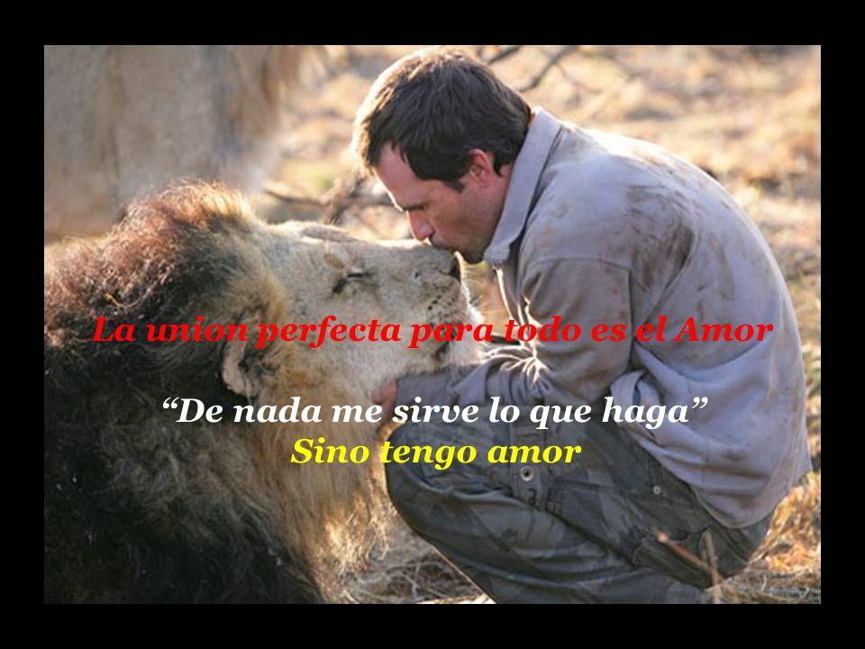 holdemqueen@hotmail.com Más vale tu sonrisa triste, que la tristeza de no verte sonreír. (Ose: 11:4) Con cuerdas humanas los atraje, con cuerdas de am
