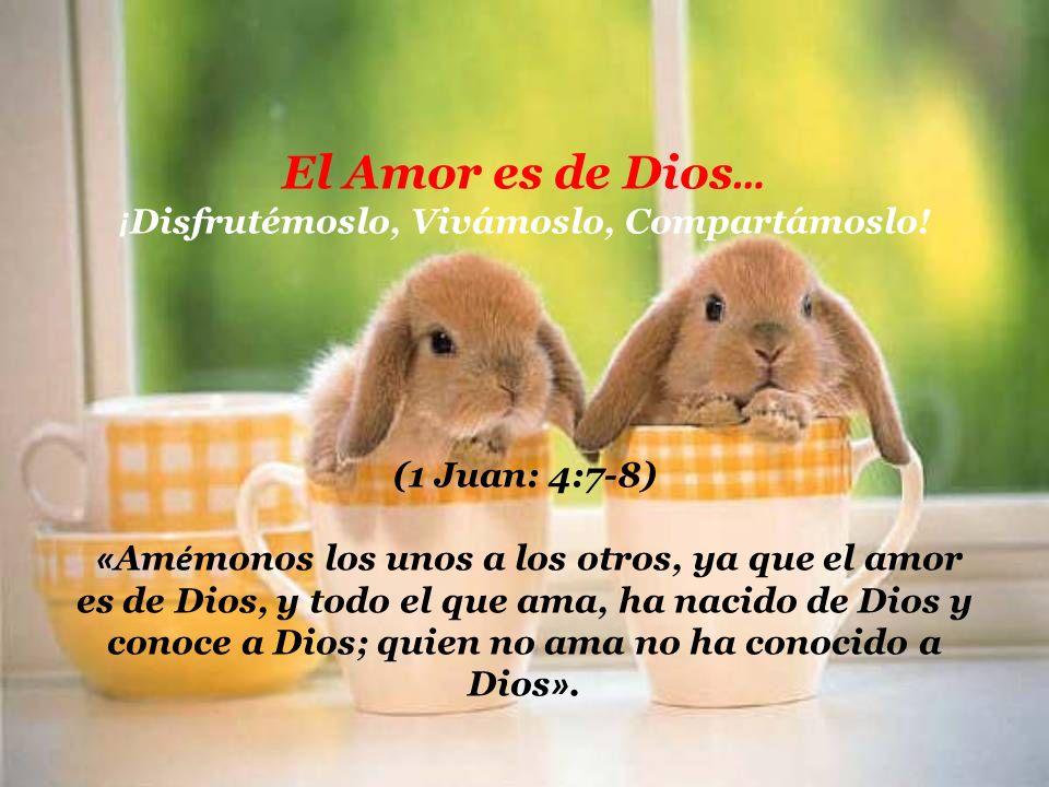 holdemqueen@hotmail.com El amor aunque sea dulce, siempre tiende a agriarse pero si lo mezclas con sabiduría y madurez va a ser un amor para toda la v