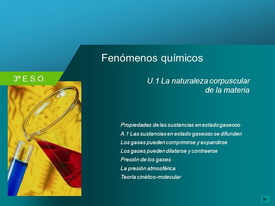 3º E.S.O. Fenómenos químicos U.1 La naturaleza corpuscular de la materia Propiedades de las sustancias en estado gaseoso Los gases pueden comprimirse