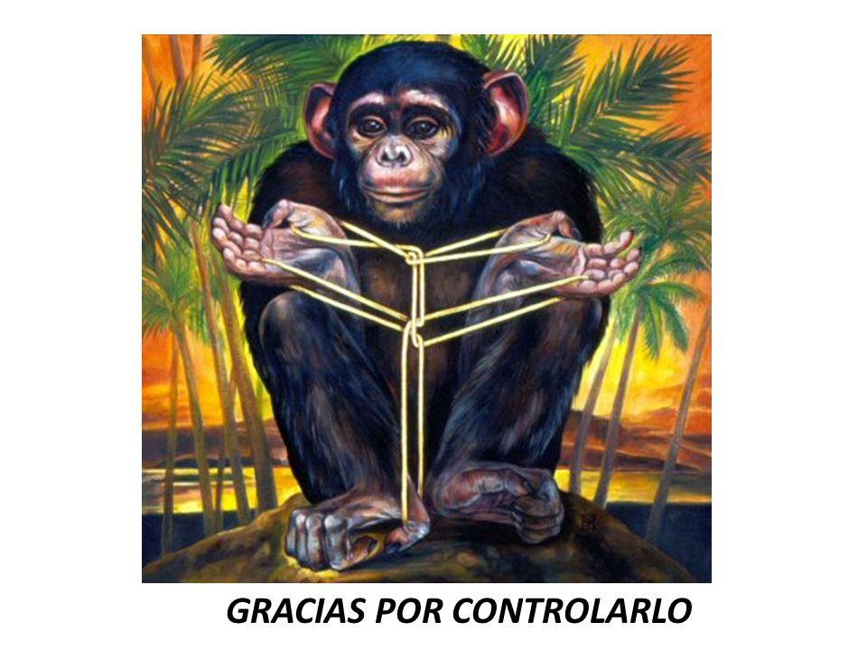 GGRACIAS POR CONTROLARLO