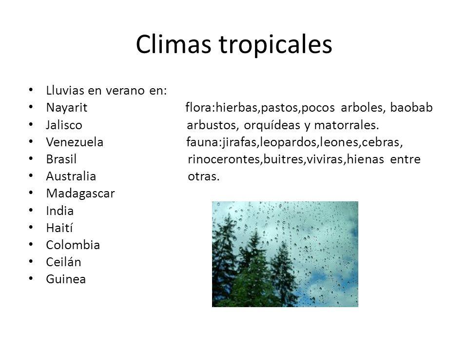 Climas tropicales Lluvias en verano en: Nayarit flora:hierbas,pastos,pocos arboles, baobab Jalisco arbustos, orquídeas y matorrales. Venezuela fauna:j
