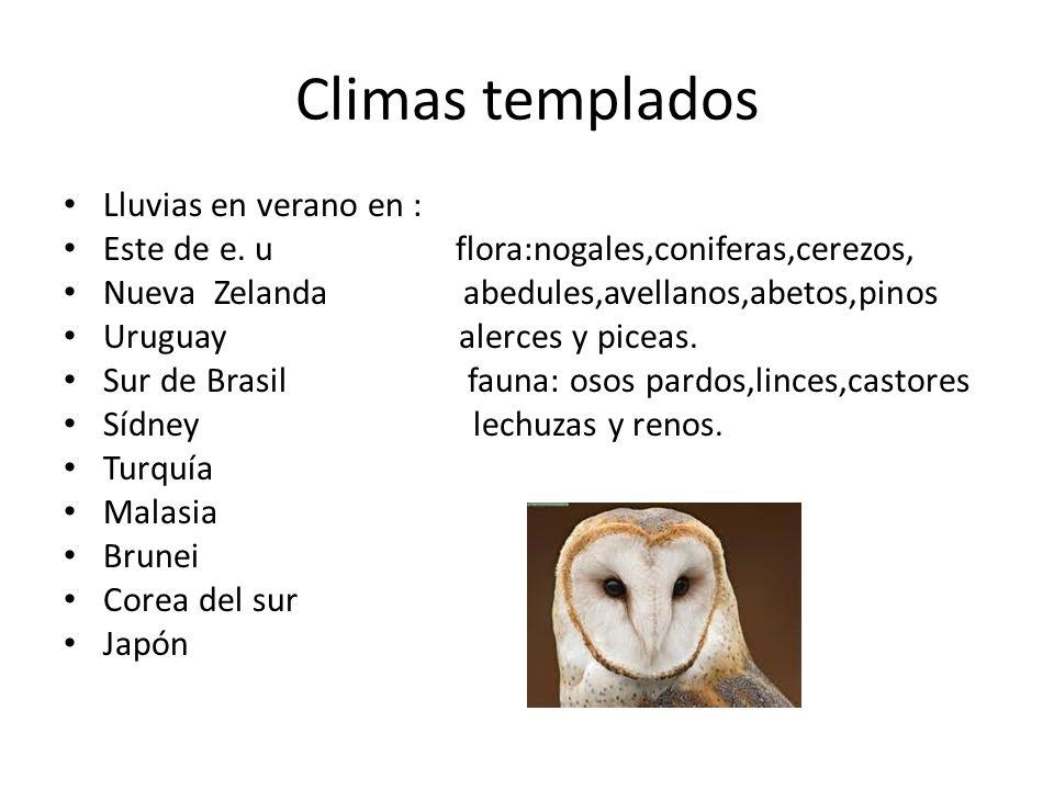 Climas templados Lluvias en verano en : Este de e. u flora:nogales,coniferas,cerezos, Nueva Zelanda abedules,avellanos,abetos,pinos Uruguay alerces y