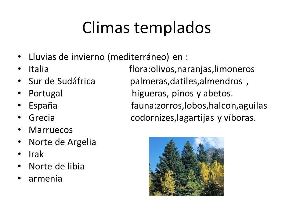 Climas templados Lluvias de invierno (mediterráneo) en : Italia flora:olivos,naranjas,limoneros Sur de Sudáfrica palmeras,datiles,almendros, Portugal higueras, pinos y abetos.