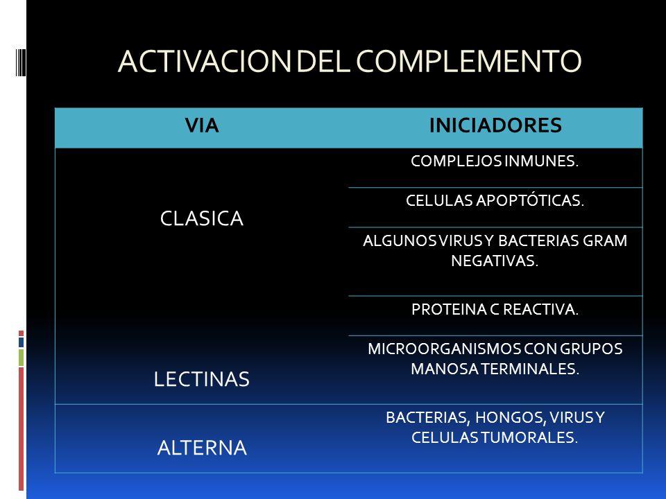 ACTIVACION DEL COMPLEMENTO VIAINICIADORES CLASICA COMPLEJOS INMUNES. CELULAS APOPTÓTICAS. ALGUNOS VIRUS Y BACTERIAS GRAM NEGATIVAS. PROTEINA C REACTIV