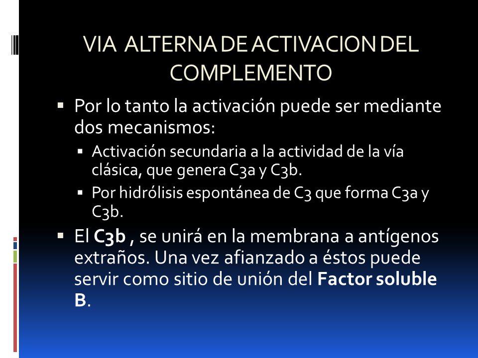 VIA ALTERNA DE ACTIVACION DEL COMPLEMENTO Por lo tanto la activación puede ser mediante dos mecanismos: Activación secundaria a la actividad de la vía