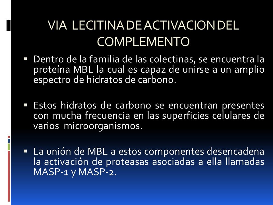 VIA LECITINA DE ACTIVACION DEL COMPLEMENTO Dentro de la familia de las colectinas, se encuentra la proteína MBL la cual es capaz de unirse a un amplio