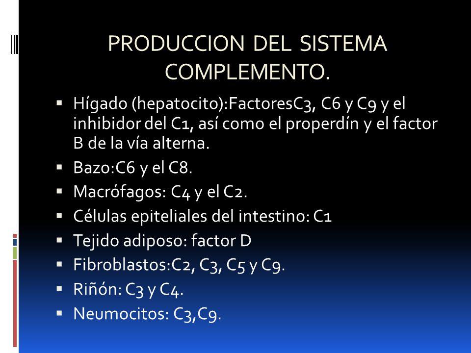 PRODUCCION DEL SISTEMA COMPLEMENTO. Hígado (hepatocito):FactoresC3, C6 y C9 y el inhibidor del C1, así como el properdín y el factor B de la vía alter