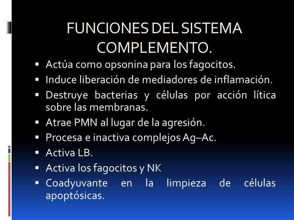 FUNCIONES DEL SISTEMA COMPLEMENTO. Actúa como opsonina para los fagocitos. Induce liberación de mediadores de inflamación. Destruye bacterias y célula