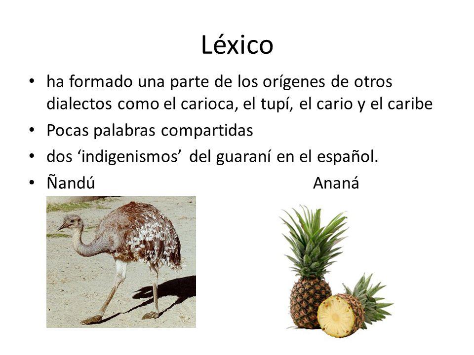 Léxico ha formado una parte de los orígenes de otros dialectos como el carioca, el tupí, el cario y el caribe Pocas palabras compartidas dos indigenis