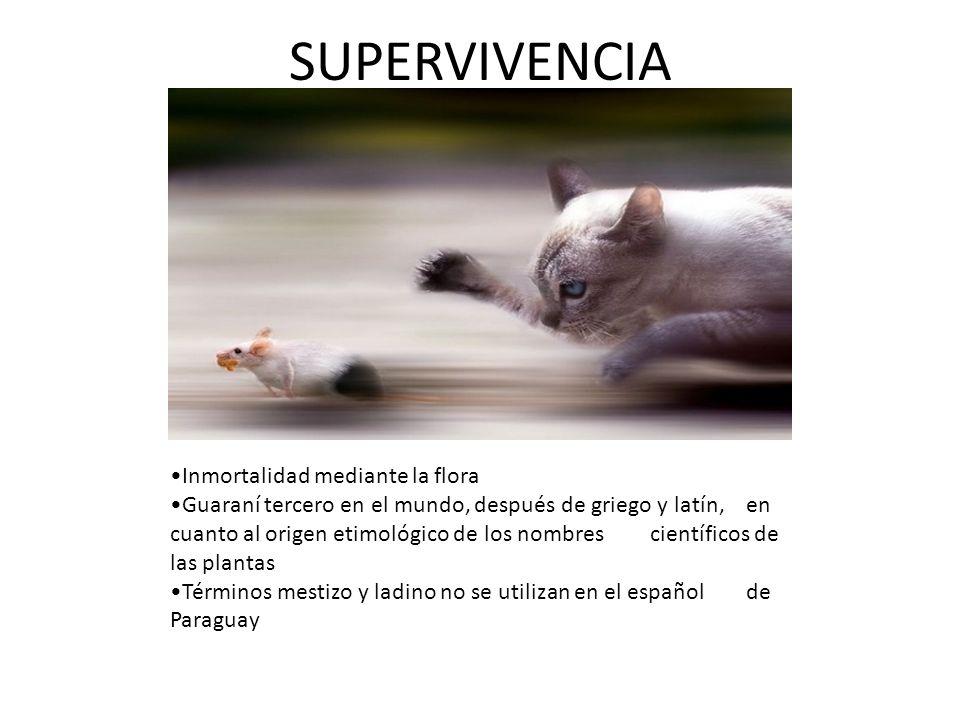 SUPERVIVENCIA Inmortalidad mediante la flora Guaraní tercero en el mundo, después de griego y latín, en cuanto al origen etimológico de los nombres ci