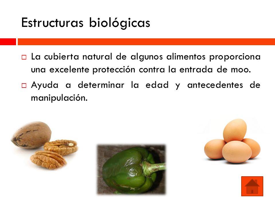 Estructuras biológicas La cubierta natural de algunos alimentos proporciona una excelente protección contra la entrada de moo. Ayuda a determinar la e