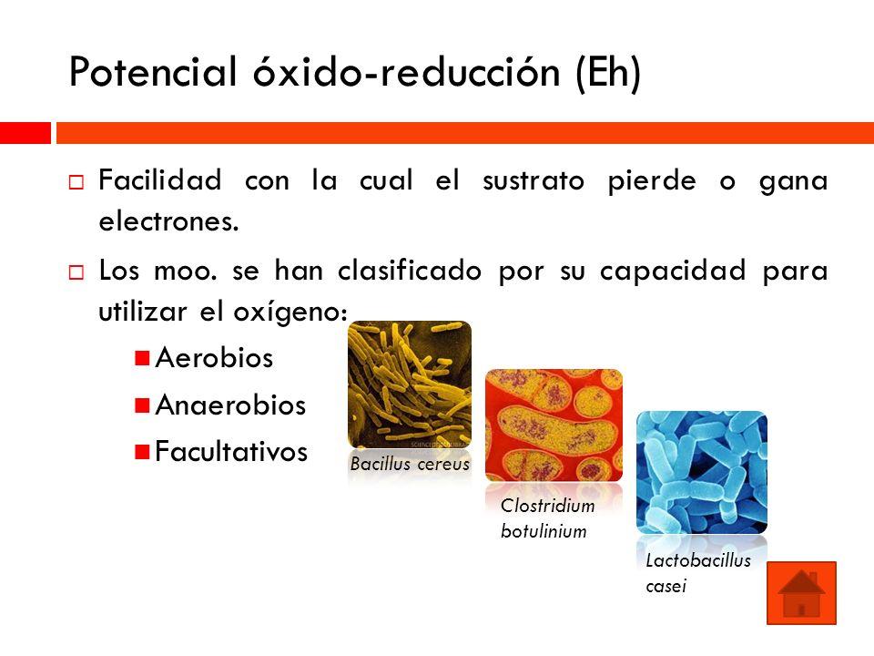 Potencial óxido-reducción (Eh) Facilidad con la cual el sustrato pierde o gana electrones. Los moo. se han clasificado por su capacidad para utilizar