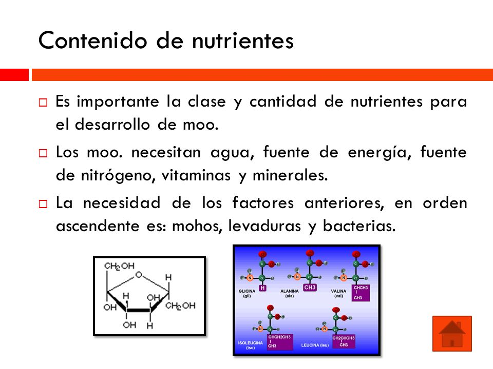 Contenido de nutrientes Es importante la clase y cantidad de nutrientes para el desarrollo de moo. Los moo. necesitan agua, fuente de energía, fuente