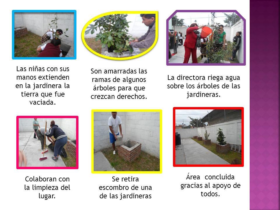 Las niñas con sus manos extienden en la jardinera la tierra que fue vaciada. Son amarradas las ramas de algunos árboles para que crezcan derechos. La