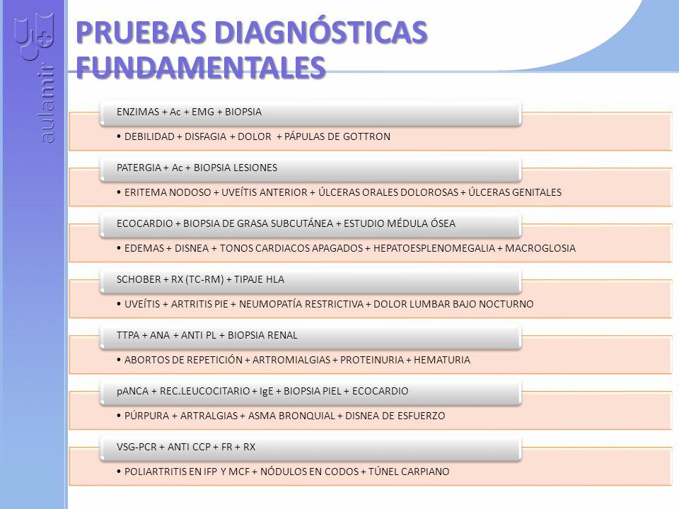 PRUEBAS DIAGNÓSTICAS FUNDAMENTALES DEBILIDAD + DISFAGIA + DOLOR + PÁPULAS DE GOTTRON ENZIMAS + Ac + EMG + BIOPSIA ERITEMA NODOSO + UVEÍTIS ANTERIOR + ÚLCERAS ORALES DOLOROSAS + ÚLCERAS GENITALES PATERGIA + Ac + BIOPSIA LESIONES EDEMAS + DISNEA + TONOS CARDIACOS APAGADOS + HEPATOESPLENOMEGALIA + MACROGLOSIA ECOCARDIO + BIOPSIA DE GRASA SUBCUTÁNEA + ESTUDIO MÉDULA ÓSEA UVEÍTIS + ARTRITIS PIE + NEUMOPATÍA RESTRICTIVA + DOLOR LUMBAR BAJO NOCTURNO SCHOBER + RX (TC-RM) + TIPAJE HLA ABORTOS DE REPETICIÓN + ARTROMIALGIAS + PROTEINURIA + HEMATURIA TTPA + ANA + ANTI PL + BIOPSIA RENAL PÚRPURA + ARTRALGIAS + ASMA BRONQUIAL + DISNEA DE ESFUERZO pANCA + REC.LEUCOCITARIO + IgE + BIOPSIA PIEL + ECOCARDIO POLIARTRITIS EN IFP Y MCF + NÓDULOS EN CODOS + TÚNEL CARPIANO VSG-PCR + ANTI CCP + FR + RX