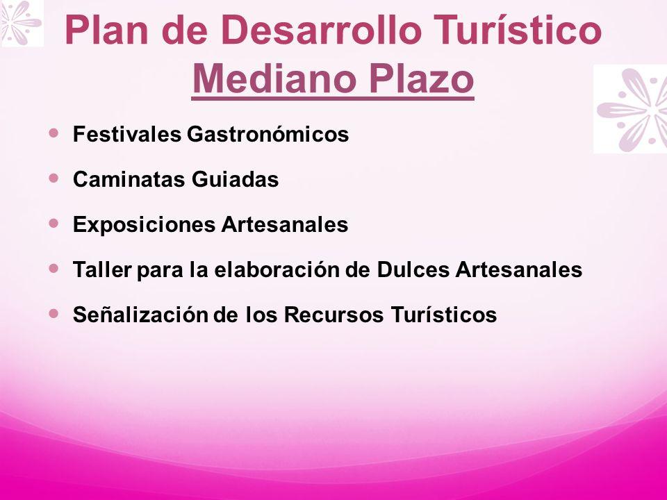 Plan de Desarrollo Turístico Mediano Plazo Festivales Gastronómicos Caminatas Guiadas Exposiciones Artesanales Taller para la elaboración de Dulces Ar