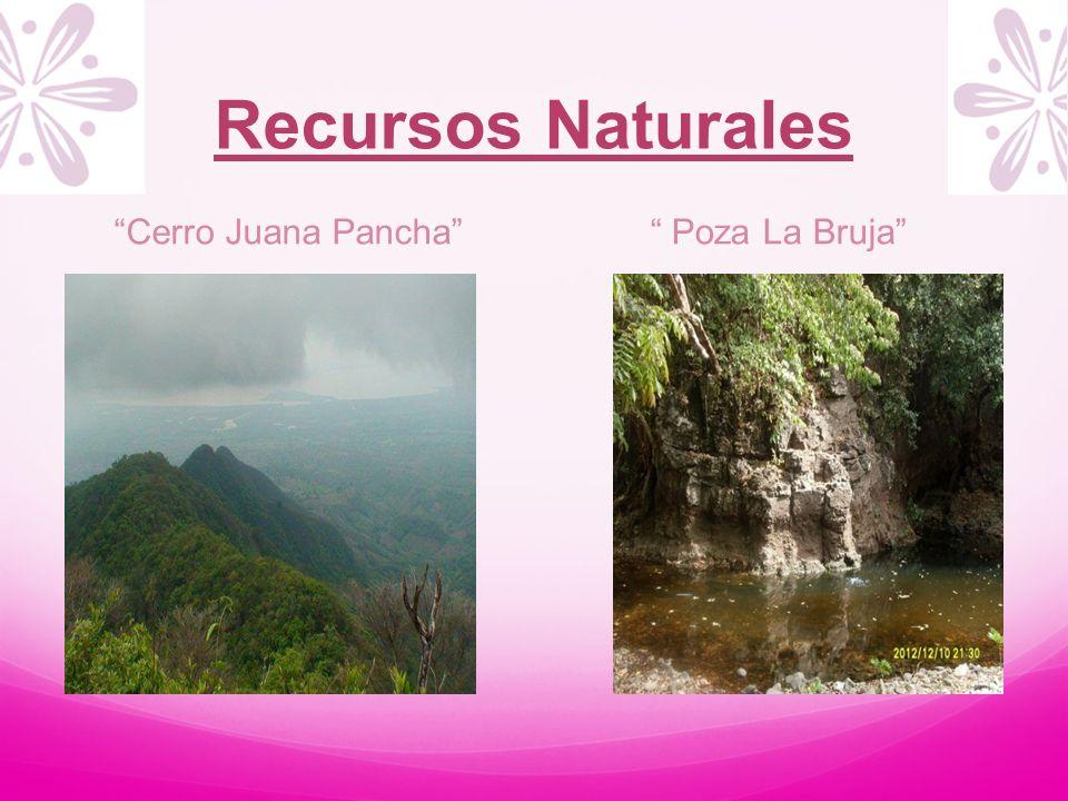 Recursos Naturales Cerro Juana Pancha Poza La Bruja