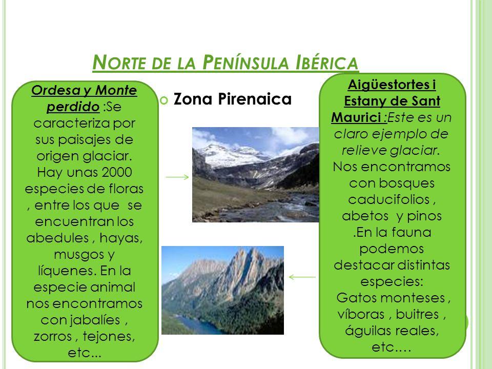 N ORTE DE LA P ENÍNSULA I BÉRICA Zona Pirenaica Ordesa y Monte perdido :Se caracteriza por sus paisajes de origen glaciar. Hay unas 2000 especies de f