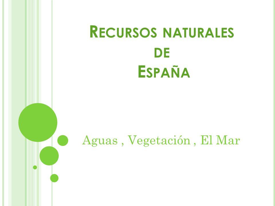 R ECURSOS NATURALES DE E SPAÑA Aguas, Vegetación, El Mar