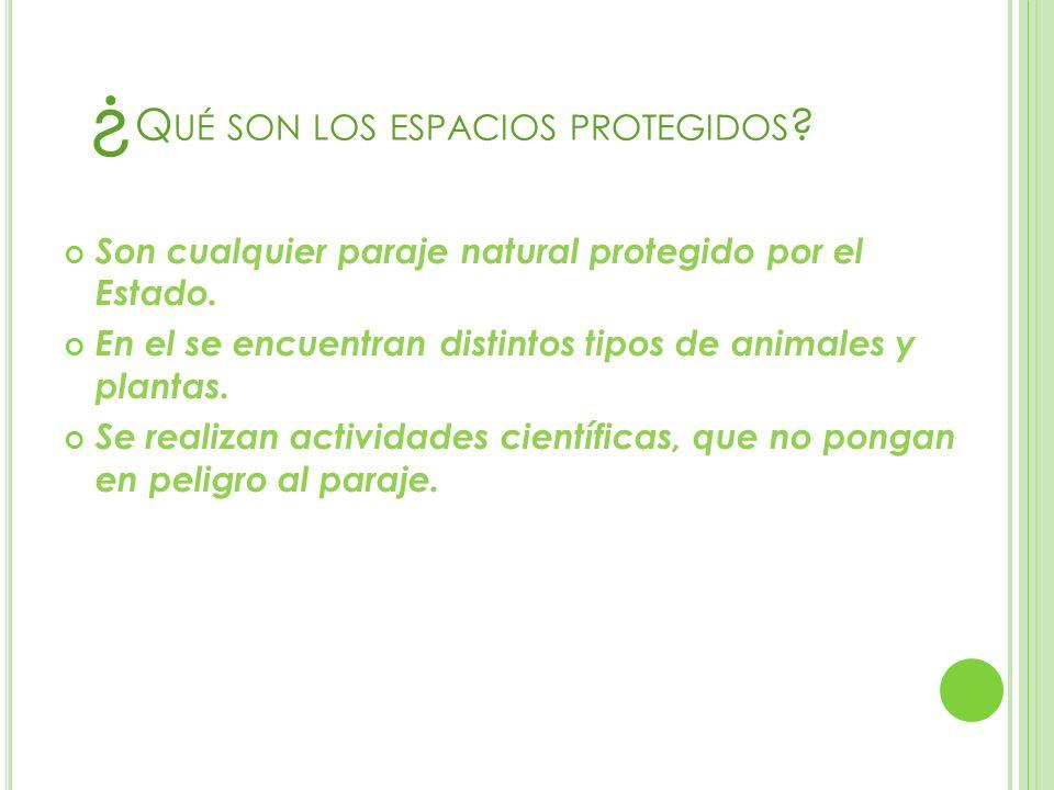 ¿ Q UÉ SON LOS ESPACIOS PROTEGIDOS ? Son cualquier paraje natural protegido por el Estado. En el se encuentran distintos tipos de animales y plantas.