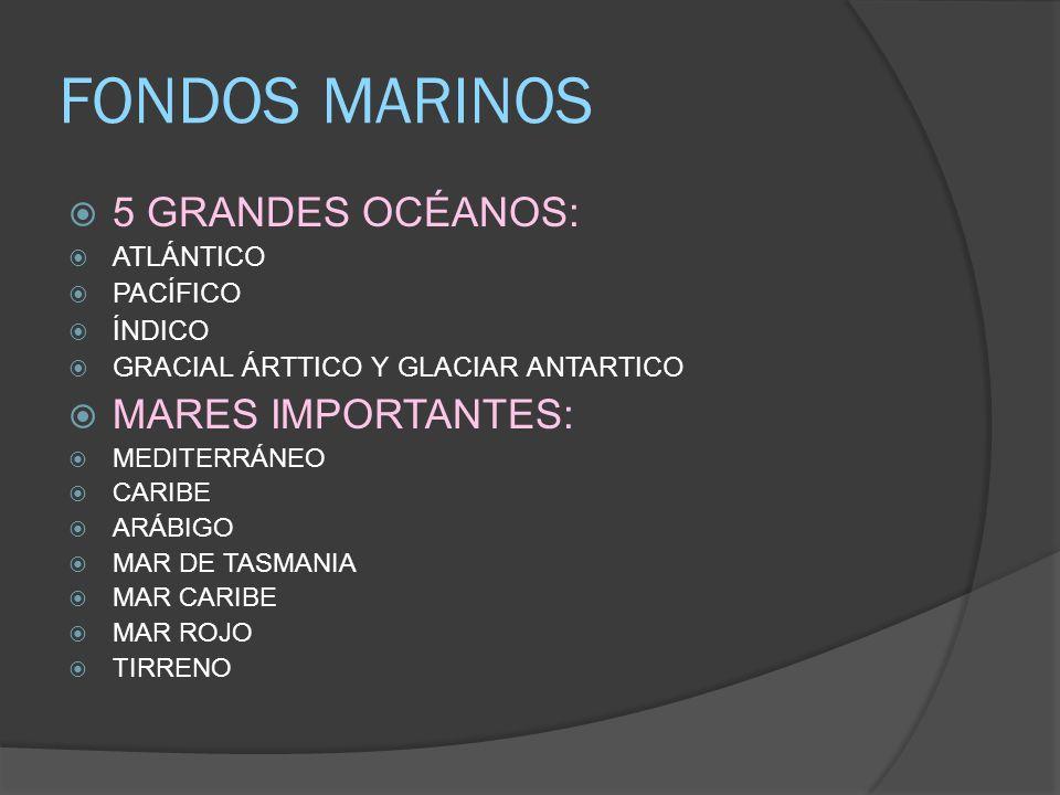 FONDOS MARINOS 5 GRANDES OCÉANOS: ATLÁNTICO PACÍFICO ÍNDICO GRACIAL ÁRTTICO Y GLACIAR ANTARTICO MARES IMPORTANTES: MEDITERRÁNEO CARIBE ARÁBIGO MAR DE