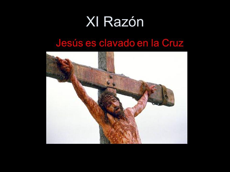 XI Razón Jesús es clavado en la Cruz