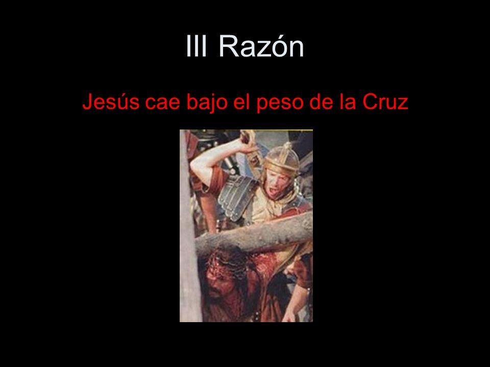 XIV Razón Jesús es puesto en el sepulcro