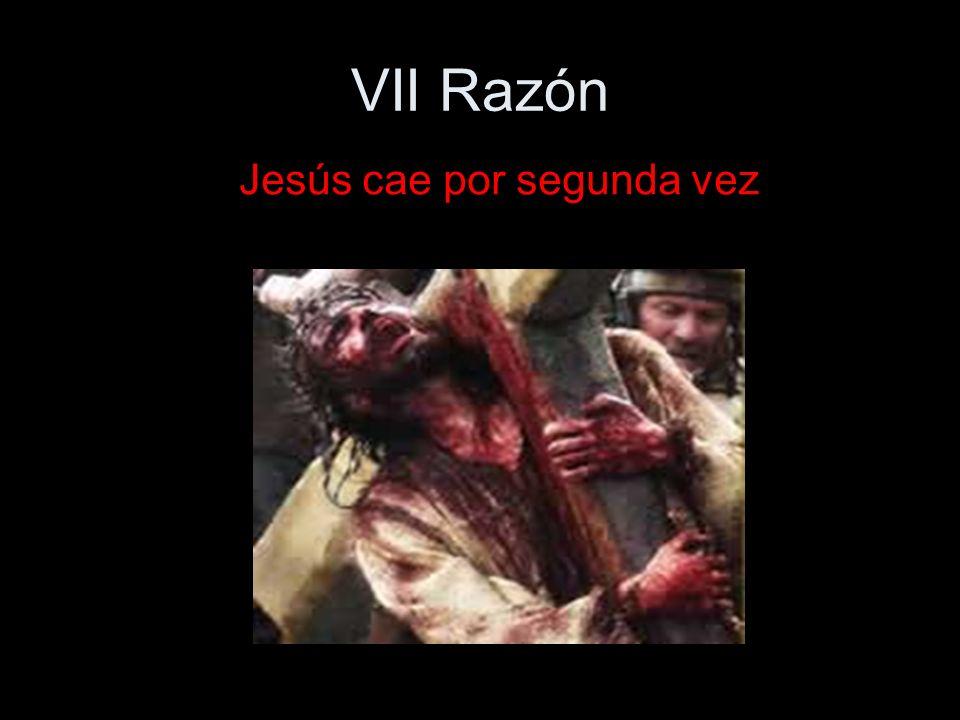 VII Razón Jesús cae por segunda vez