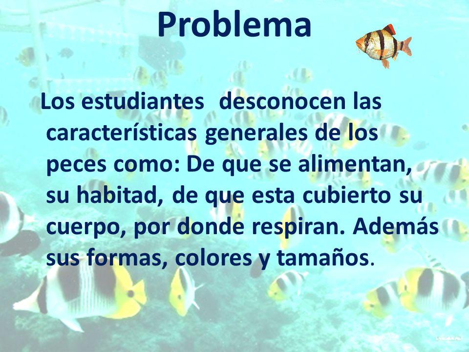 Problema Los estudiantes desconocen las características generales de los peces como: De que se alimentan, su habitad, de que esta cubierto su cuerpo,