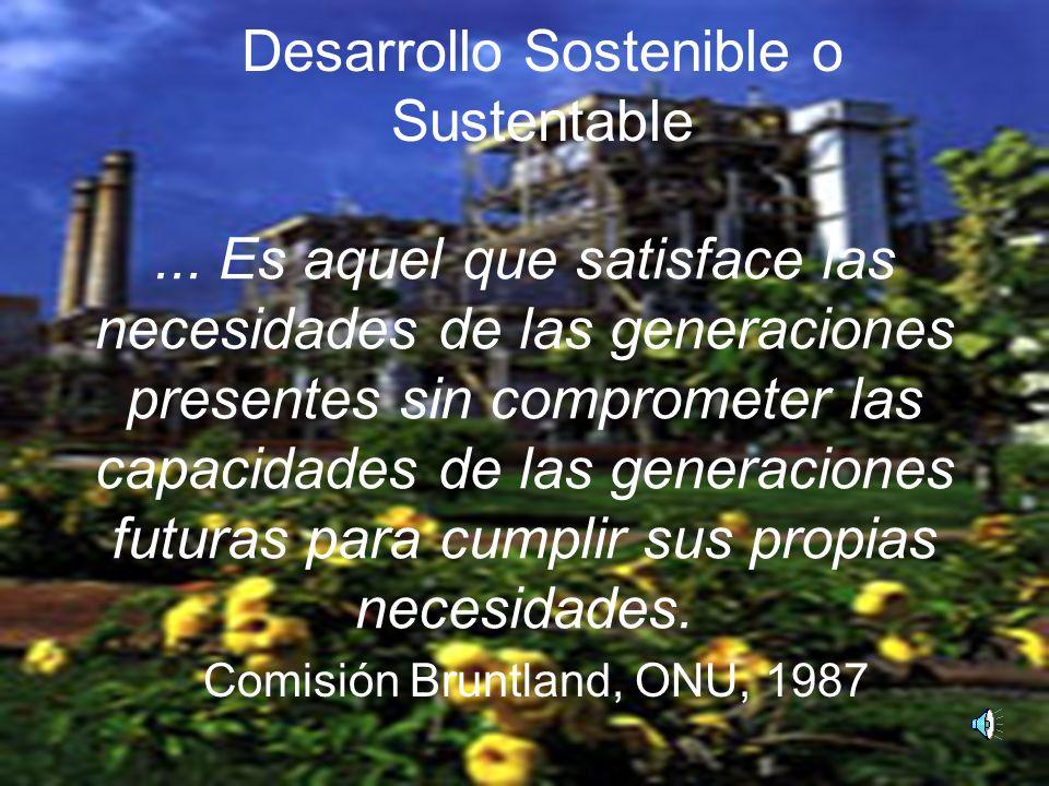 Desarrollo Sostenible o Sustentable...