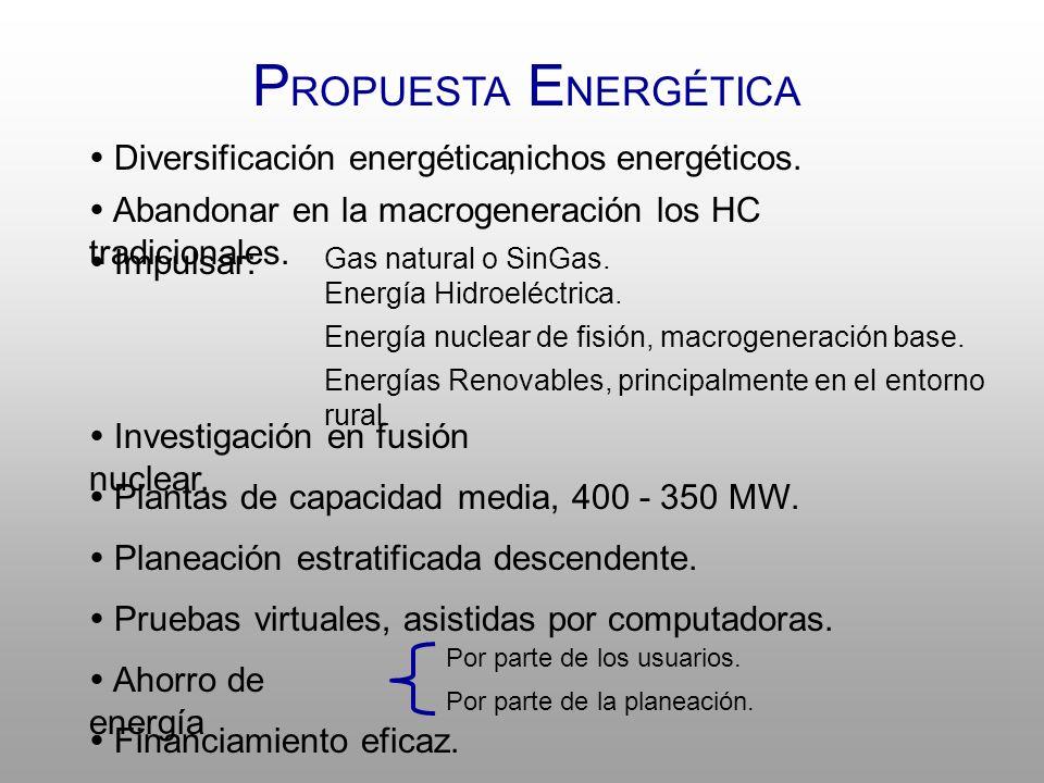 P ROPUESTA E NERGÉTICA Diversificación energética,nichos energéticos.
